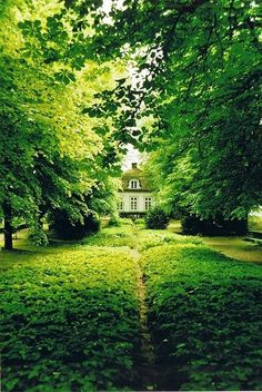 A country home with surrounded by lush green. Inspiration for green gems.
