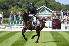 Simon Grieve's Burghley blog: it is almost an out of body experience http://trib.al/dHjsOvK