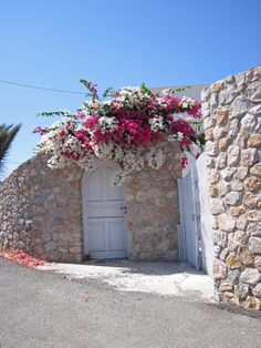 Bougainvillea over the door - Monolithos, Santorini Beautiful Flowers, Beautiful Places, Greece Art, Santorini Greece, Mykonos, Santorini Island, Exotic Plants, Entrance Doors, Patio Design