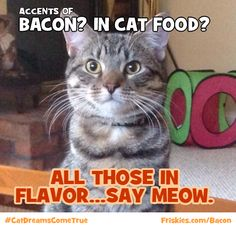 Friskies Tasty Treasures with Bacon