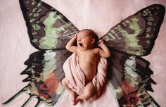 The perfect baby gift ! Lisa Mende Design: Meet Mac Meckley