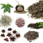 10 Different Teas That Will Help Boost Your Metabolism And Promote Weight Loss