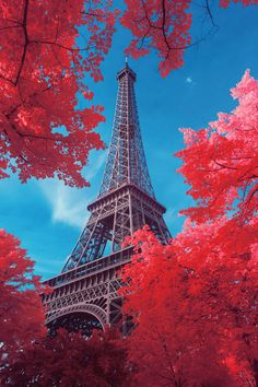 Eiffel Tower; Paris France