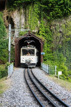 Chocolate Train in Montreux, Switzerland. This vintage Pullman car train takes you from Montreux to Gruyeres. Passengers are served hot chocolate and chocolate croissants. In Gruyeres, cheese fondue awaits, as well as more chocolate to sample at the Cailler Chocolate Factory.