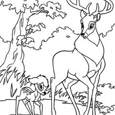 Bambi Walking With His Father Along The Forest Coloring Pages