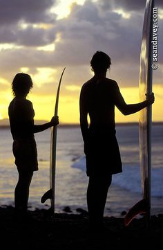 Silhouetted surfers at Noosa Point, on the Sunshine Coast, Queensland, Australia