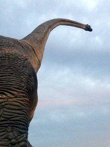 Exposición de dinosaurios en Torremolinos