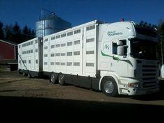 Scania r500 V8 Animal transportation