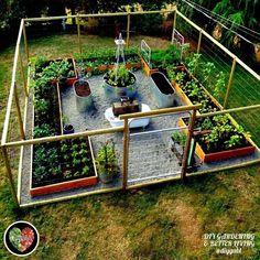 Considering starting your own backyard vegetable garden for fresh organic vegetables this article has backyard vegetable garden layout ideas for you. Garden Yard Ideas, Veg Garden, Vegetable Garden Design, Garden Fencing, Garden Projects, Fenced Garden, Backyard Ideas, Vegetable Gardening, Container Gardening
