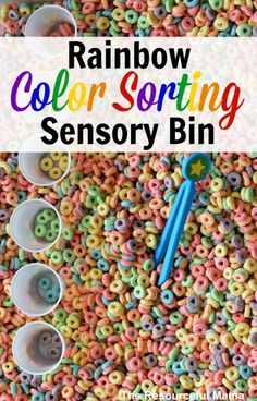 Rainbow Color Sorting Sensory Bin - perfect for spring, St.Patrick's day or any other day of the year!  Love this idea to set up as a fun, no-mess center in a special education classroom.  Read more at:  http://www.theresourcefulmama.com/rainbow-color-sorting-sensory-bin/