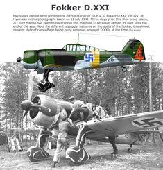 Fokker D.XXI Ww2 Aircraft, Fighter Aircraft, Military Aircraft, Finland Air, Finnish Air Force, War Thunder, Airplane Art, Ww2 Planes, Military Photos