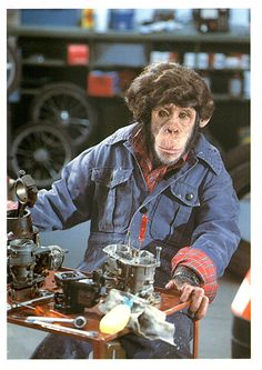 """We in the UK loved the Brooke Bond PG Tips advertising using the Chimps family. This is until do gooders decided it was cruel. Now we have a hand puppet and an idiot?  The caption on this card is """"You want it When""""?     :-)"""