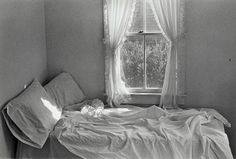 lilo raymond still life photography - Google Search