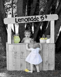 This is how I envision the stand to look like. I like the look and the size.  Also, I like how the lemonade sign is slanted
