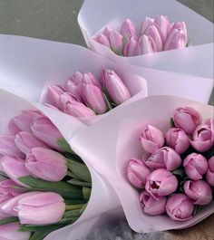Little Flowers, My Flower, Beautiful Flowers, Spring Aesthetic, Flower Aesthetic, No Rain, Flowers Nature, Little Things, Planting Flowers
