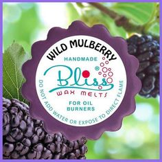 With its grapey cherry smell, an aroma like Nanna making mulberry jam in the kitchen, it smells just so berry, berry nice, you'll want to eat it. Mulberry Jam, Electric Warmer, Berry Berry, Scented Wax Melts, Oil Burners, Home Scents, Pie Dish, Tarts, Tea Lights