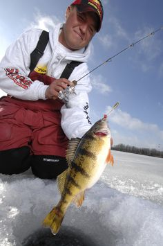 Perch Lures Ice Fishing Learn how to catch any kind of fish with great tips including lures and bait at howtocatchfishnetwork.com
