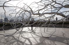 By Roxy Paine: stainless steel trees