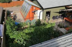 Tips for designing a passive solar greenhouse in northern climates.