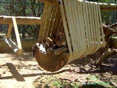 diy swing | DIY Big Cat Swing Set | PetDIYs.com