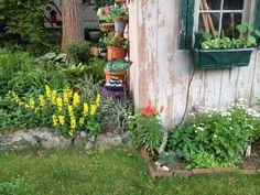 In the garden today! #gardensense  #gardening  #garden  #organic