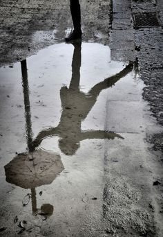 umbrella in puddle reflection