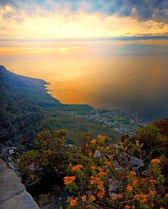 Instantly recognizable as South most iconic landmark Table Mountain offers more than spectacular views of and the Atlantic beyond. Book a hiking tour on TripAdvisor and youll encounter an area rich with stunning biodiversity offering fi Sea Photography, Hiking Tours, Vacation Days, Table Mountain, Sounds Like, Storms, Double Tap, South Africa, Trip Advisor