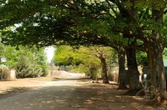 Underberg, Kwazulu Natal South Africa