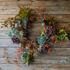Blue Bitters Wreath : Thanksgiving | Plump clusters of succulents, dense clouds of indigo hydrangea, autumn leaves and Cali euc twist and weave into a dried honeysuckle vine frame.