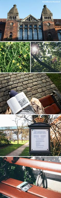 Royal Library Garden | SCANDI SIX: Hidden Hangouts in Copenhagen | Scandinavia Standard