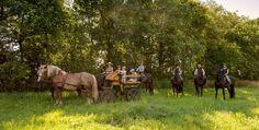 Picknick tocht in de zomer
