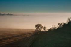 Fog - Iowa/Illinois Border [OC] [2048x1365]