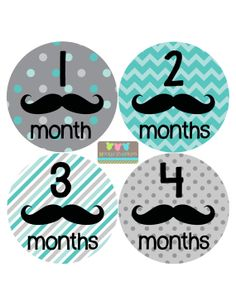 Baby Month Stickers Monthly Bodysuit Stickers Monthly Baby Stickers Baby Shower Gift Photo Prop Baby Milestone Stickers 161 on Etsy, $10.99