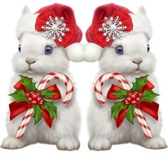 Christmas Signs, Christmas Pictures, Christmas Decorations, Animals And Pets, Cute Animals, Christmas Kitten, Christmas Graphics, Christmas Illustration, Bunny