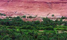Marokko, Dattelpalmenoasen bei El Jedid , 7-5