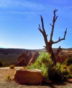 Redrock canyon country - Colorado