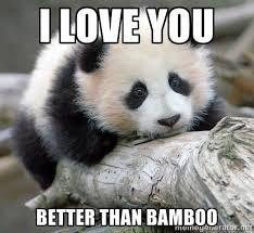 Image result for panda memes