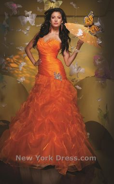 Orange power! Tony Bowls 111529