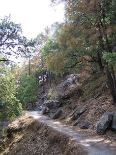 Path to Kaladungi