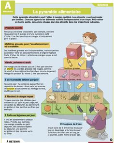 Science infographic and charts Science infographic - La pyramide alimentaire Infographic Description Science infographic La pyramide alimentaire - French Teacher, Teaching French, Food In French, French Conversation, Food Vocabulary, French Classroom, French Resources, Food Pyramid, Educational Websites
