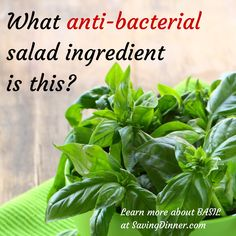 anti-bacterial herb - http://savingdinner.com/what-anti-bacterial-salad-ingredient-is-also-my-favorite-herb/