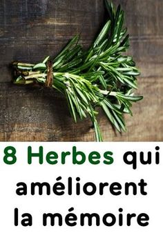 8 Herbes qui améliorent la mémoire Sante Bio, Fitness Tips, Health Fitness, Miracle Morning, Natural Home Remedies, Junk Food, Healthy Tips, Aloe Vera, Spices