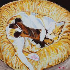 "cat sleeping-oil on canvas 20x20"" by dragoslav milic"