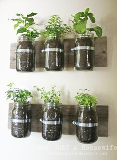 Jar wall planter #Garden, #Jar, #Kitchen, #Planter