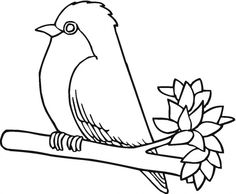 99. robin bird coloring pages - Enjoy Coloring