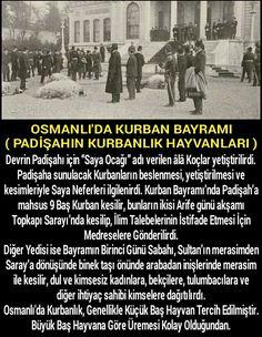 OSMANLI'DA KURBAN BAYRAMI #Tarih #Bayram #Ecdad