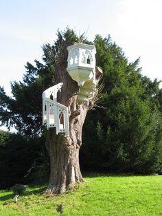 Tree Pulpit