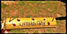DIY Ladybug Feeders-fun for the kids, good for the garden!