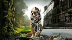In a world that looks like it shares similarities with Will Smith's 'I Am Legend', this tiger stalks the streets as a biomechanical cyborg. http://digitalart.io/biomechanical-cyborg-tiger/