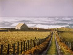 The lane down to St Boniface church, on Papa Westrey island in the Orkney Islands